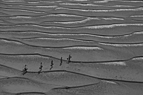 On the sandbank.jpg