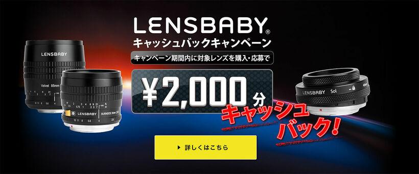 lensbabycampaign2019_cash.jpg