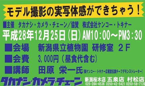 takanashi2.jpg