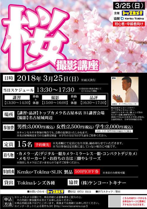 180325-topsakura.jpg