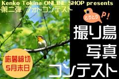 bn_toritori.jpg