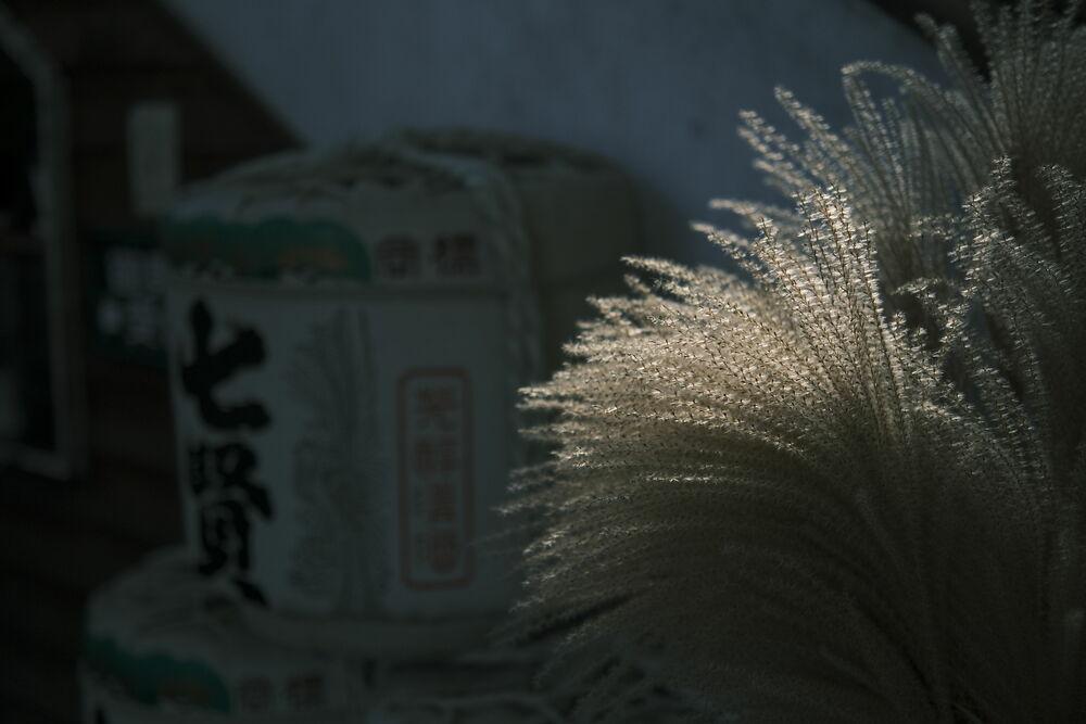 atxm33mm_ogawasample11.JPG
