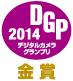 dgp2014_gold.jpg