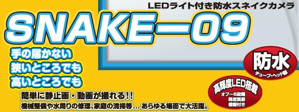 snake_09_top.jpg