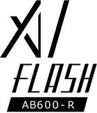 AI_flash_logo1.jpg