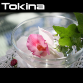 Tokina単焦点マクロレンズ