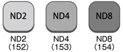 3nd_kit.jpg