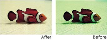 cokin030_fish.jpg
