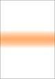 コーラルストライプ