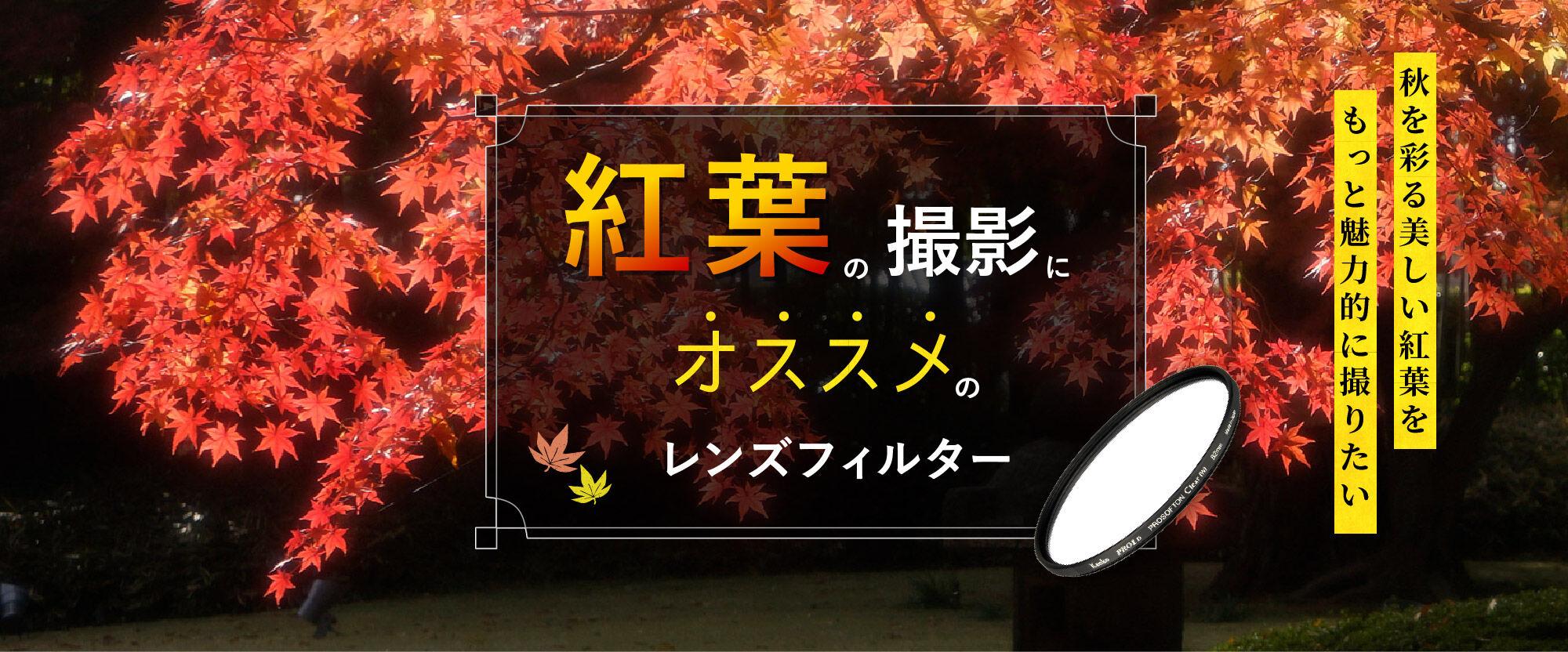autumnleavefilter_bannar202110.jpg