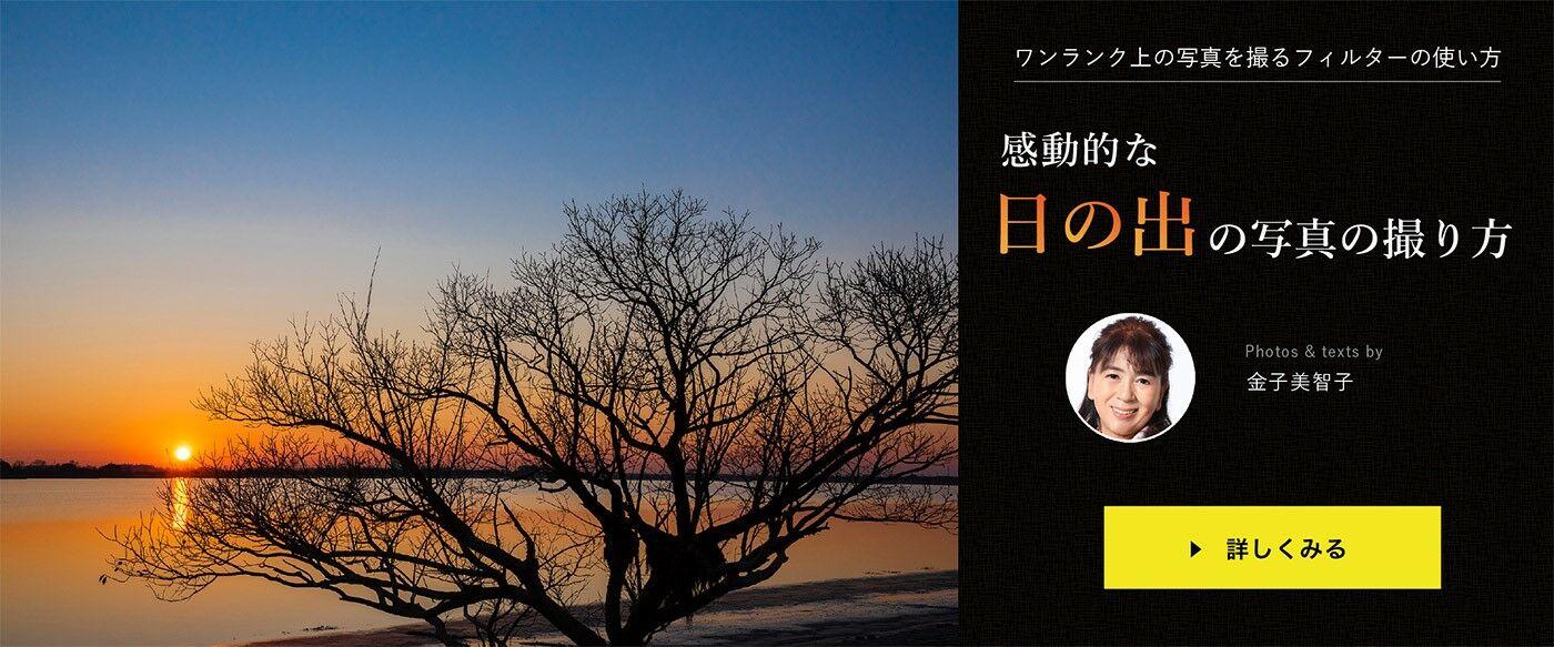 hinode_kaneko20191216bannar.jpg