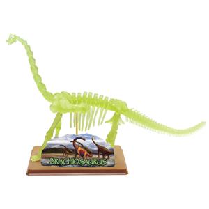 EASTCOLIGHT#28211 組み立て ブラキオサウルス スケルトン(蓄光)