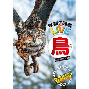 双眼鏡・鳥図鑑(ケンコーオリジナル版)セット画像02