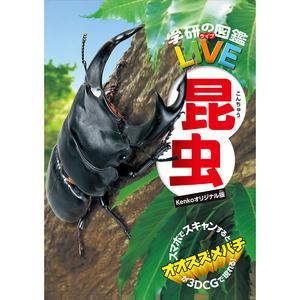 虫眼鏡・昆虫図鑑(ケンコーオリジナル版)セット画像04
