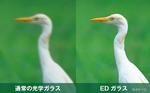 アバンター 8×32 ED DH画像01
