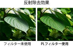 201806_filter_pl_hikaku.jpg