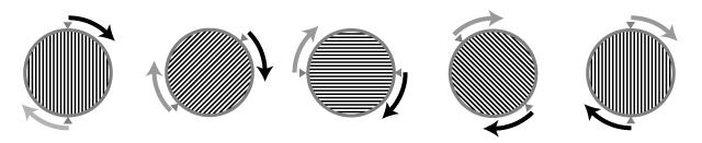 pl_spin.jpg