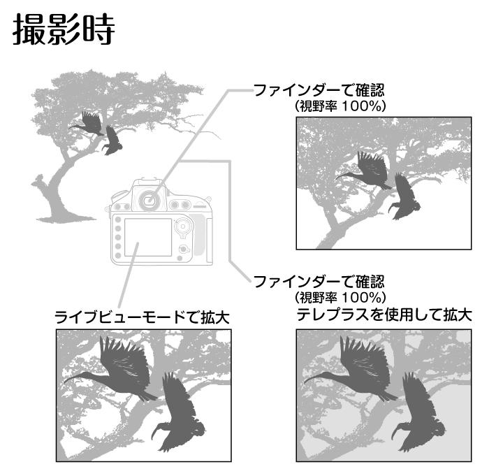 tele_Finder.jpg