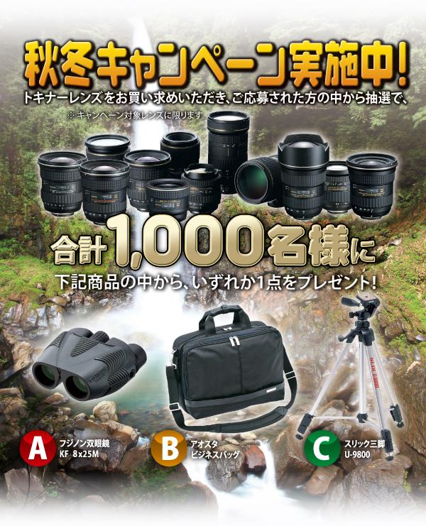 tokina_campaign_2011fall.jpg
