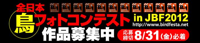 title_b12012.jpg